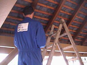 Installation anti pigeons