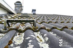 Entretenir la toiture et les façades - toiture mauvais état - mousse